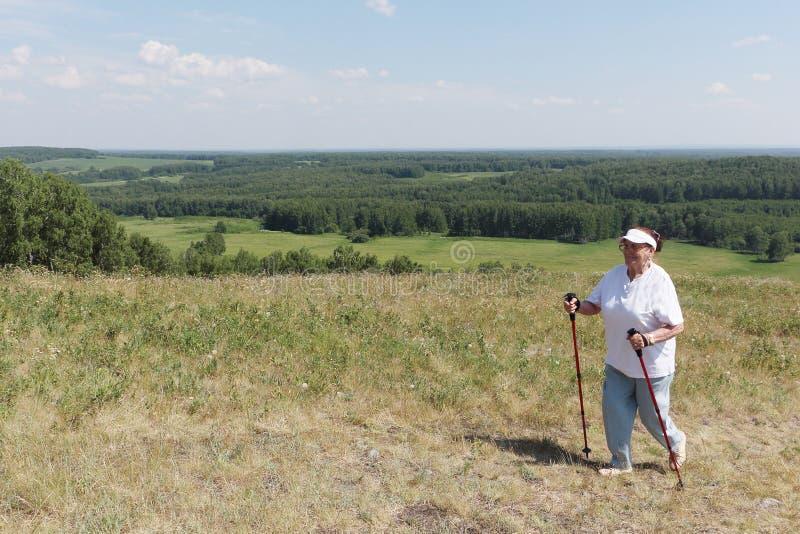 Nordic Walking - elderly woman is hiking in summer stock images