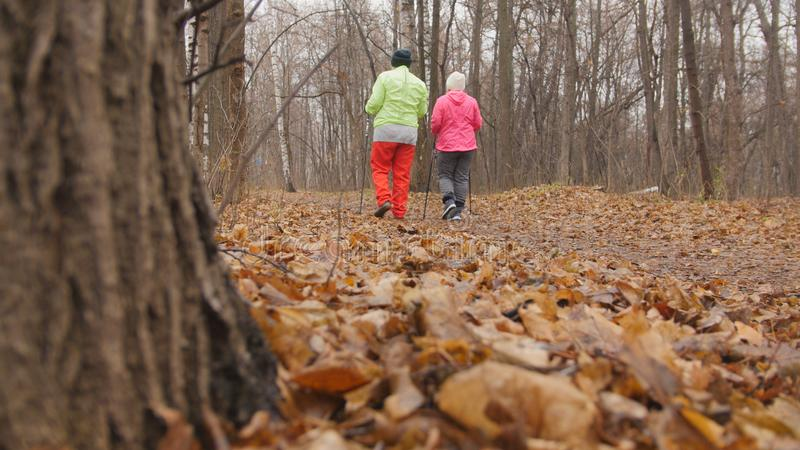 Nordic walking for elderly women outdoor - two senior ladies have training outdoor - rear view. Telephoto royalty free stock photo