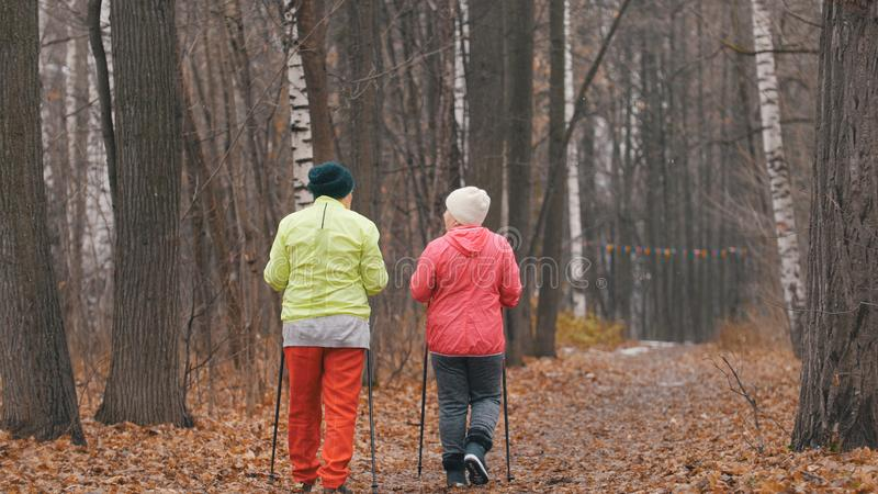 Nordic walking for elderly women outdoor - two senior ladies have training outdoor - rear view. Telephoto stock images