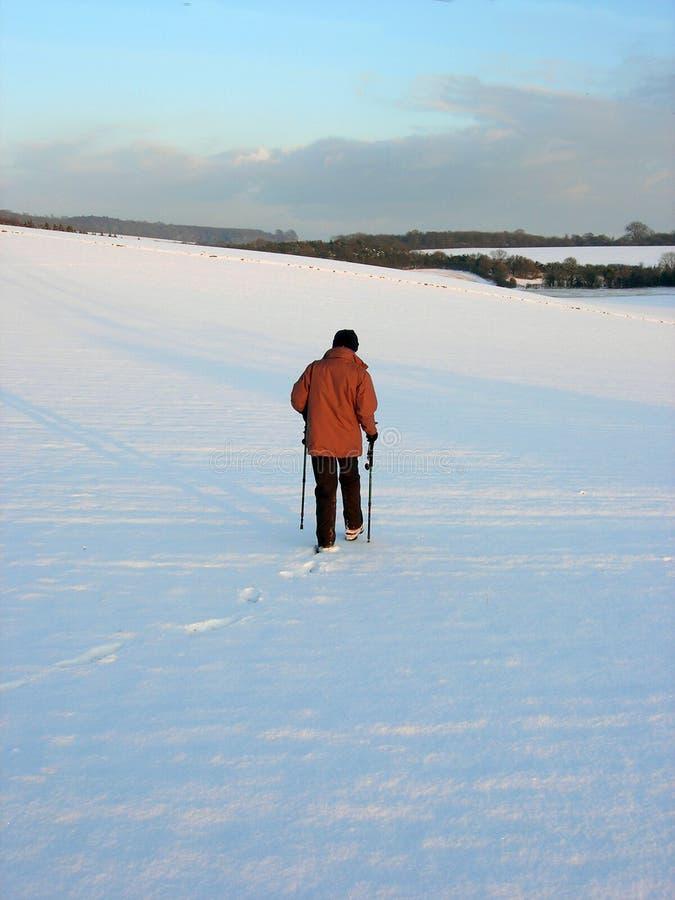 Nordic Walking In English Countryside Royalty Free Stock Image