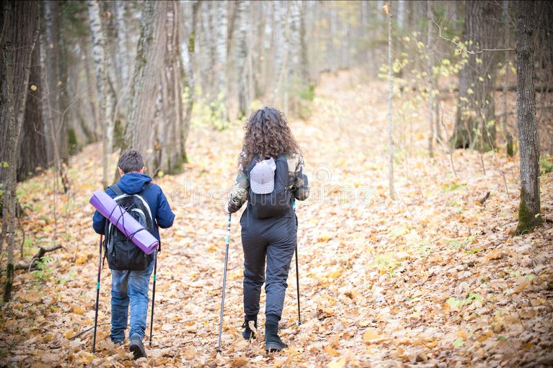 Nordic walking. Little boy and young woman. Back view. Nordic walking. Little boy and young woman in the forest. Back view royalty free stock images