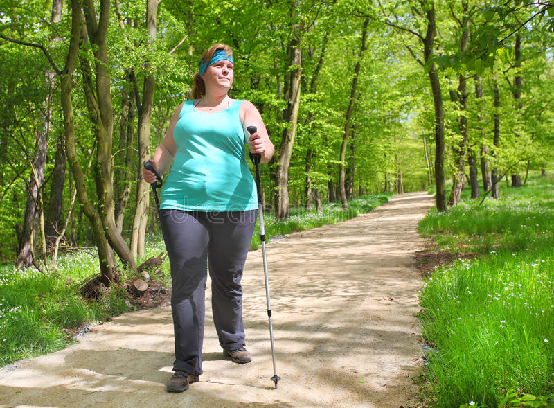 Nordic walking. Overweight woman walking on forest trail. Slimming and active lifestyle theme stock photos