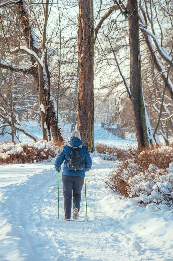 Nordic walking. Senior woman on a walk in the park in winter. Nordic walking. Senior woman on a walk in the snow in the park in winter. Active people outdoors royalty free stock image