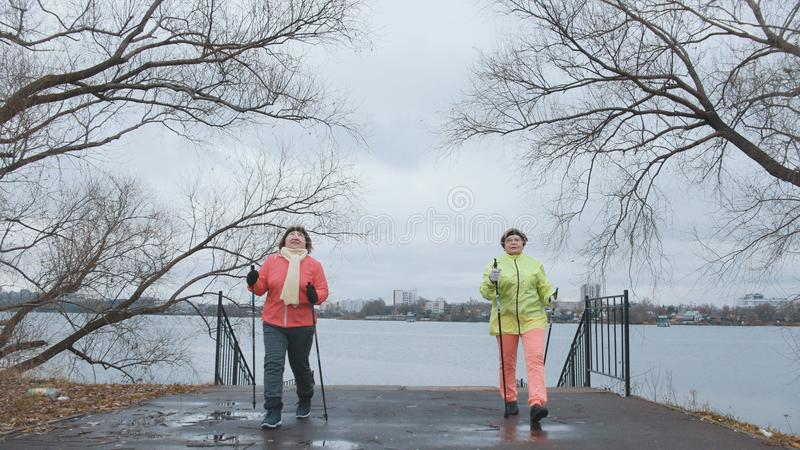 Nordic walking for senior women outdoor - two senior ladies have training outdoor. Wide angle royalty free stock images