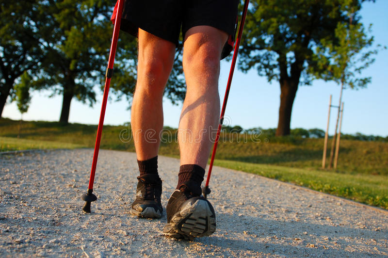 Download Nordic walking in summer stock image. Image of fitness - 27411091