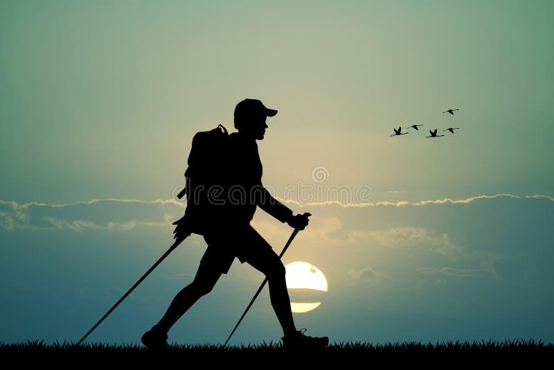 Nordic walking at sunset. Illustration of nordic walking at sunset royalty free illustration