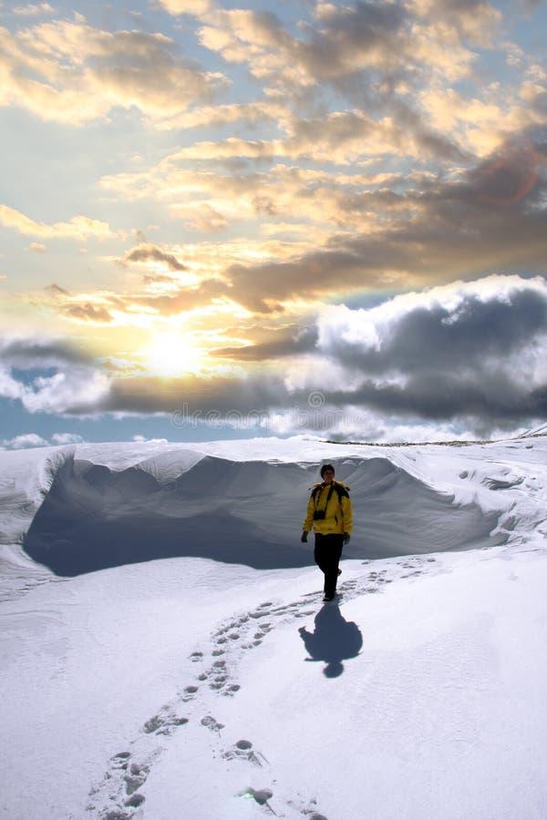 Nordic walking in winter landscape stock photos