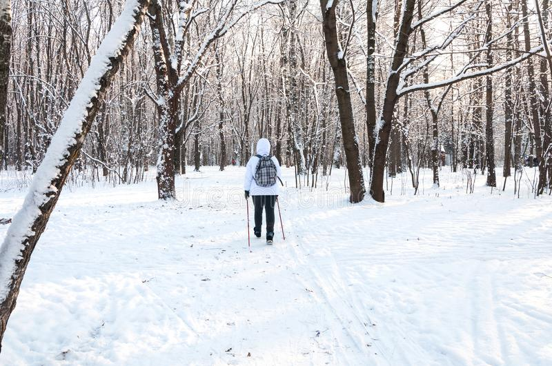 Nordic walking. Woman in a white jacket with a backpack hiking in a cold forest. Scenic beautiful landscape with snow.  stock photo