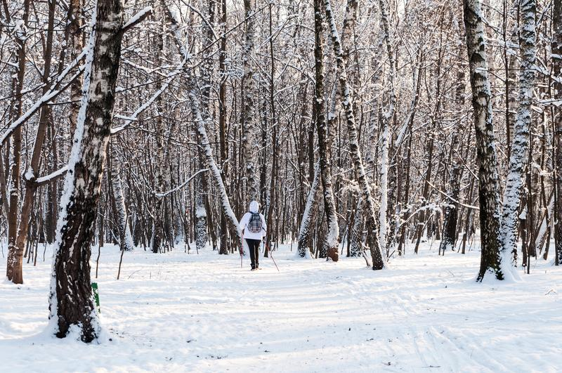 Nordic walking. Woman in a white jacket with a backpack hiking in a cold forest. Scenic beautiful landscape with snow.  stock images