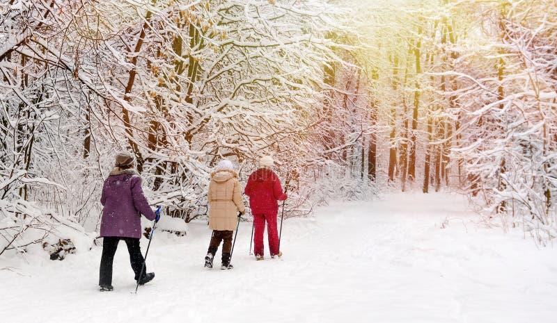 Nordico che cammina nel parco di inverno fotografia stock libera da diritti