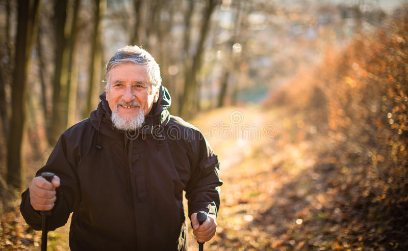 Nordisches Gehen des älteren Mannes stockfotos
