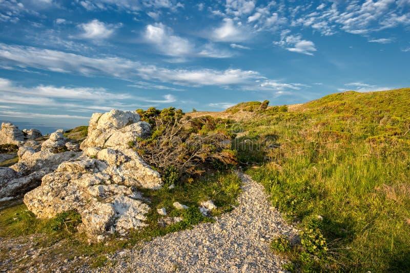 Nordisches Licht bei Langhammars auf Faro-Insel lizenzfreies stockbild