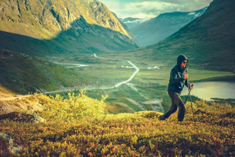 Nordisk gå bergslinga royaltyfri foto
