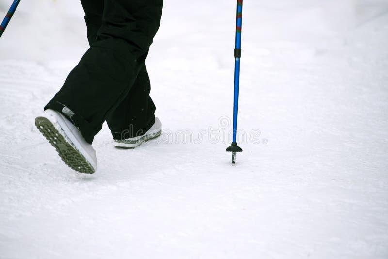 Nordiskt gå i vinter, kvinnors ben och gå pinnar i snö royaltyfri bild