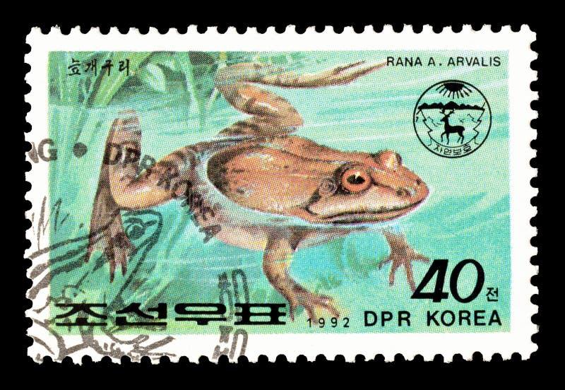 Nordkorea-Programm ?ber Briefmarken stockbilder