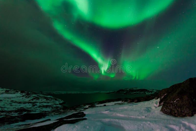 Nordlichter über dem Fjord in Norwegen stockfoto
