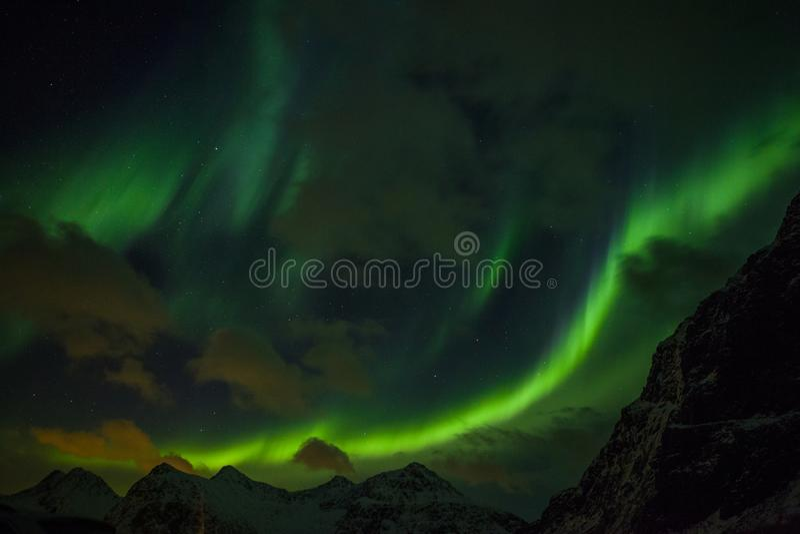 Nordlichter Aurora Borealis Norwegen, Lofoten lizenzfreies stockfoto