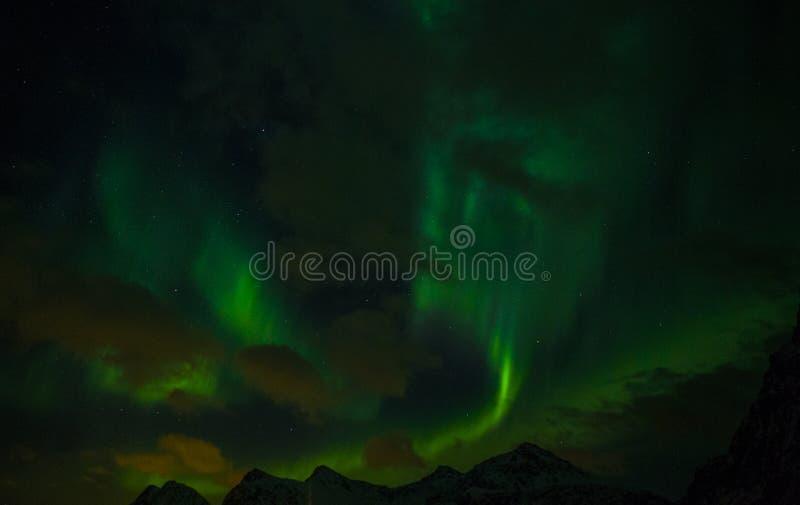 Nordlichter Aurora Borealis Norwegen, Lofoten lizenzfreie stockbilder