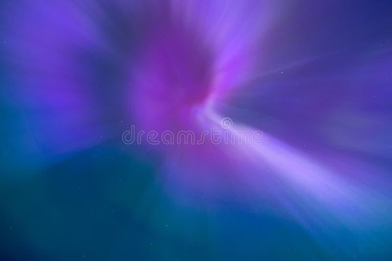 Nordlichter in Estland stockbild