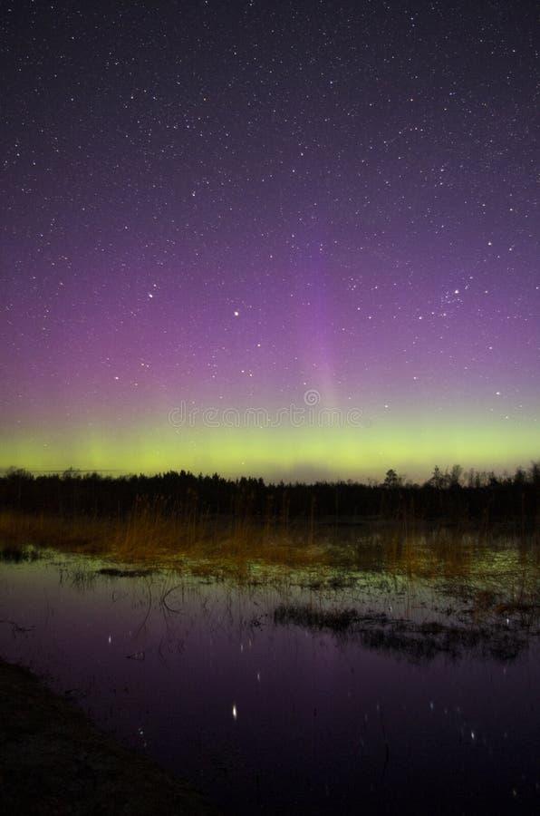 Nordlichter mit schöner Reflexion stockbild
