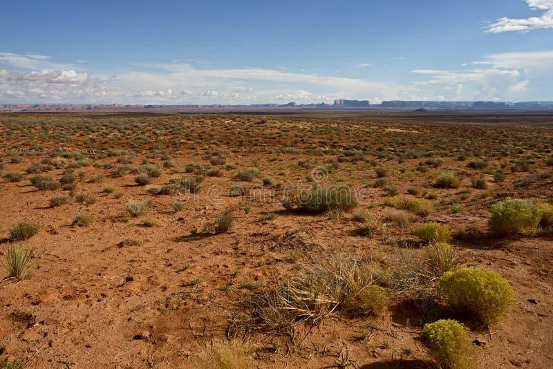 Nordlig Arizona öken arkivfoton