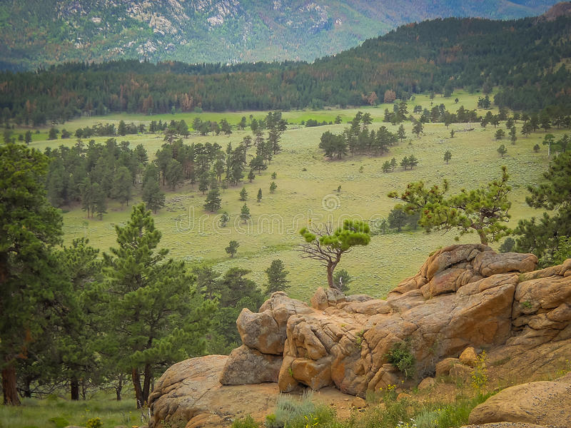 Nordlig Colorado Estes Park Colorado Rocky Mountain nationalpark arkivfoto