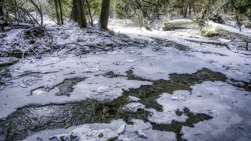 Nordlig is-täckt ström i vinter royaltyfri bild