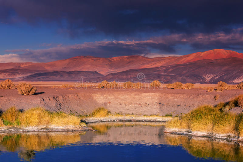 Nordliga Argentina arkivfoto