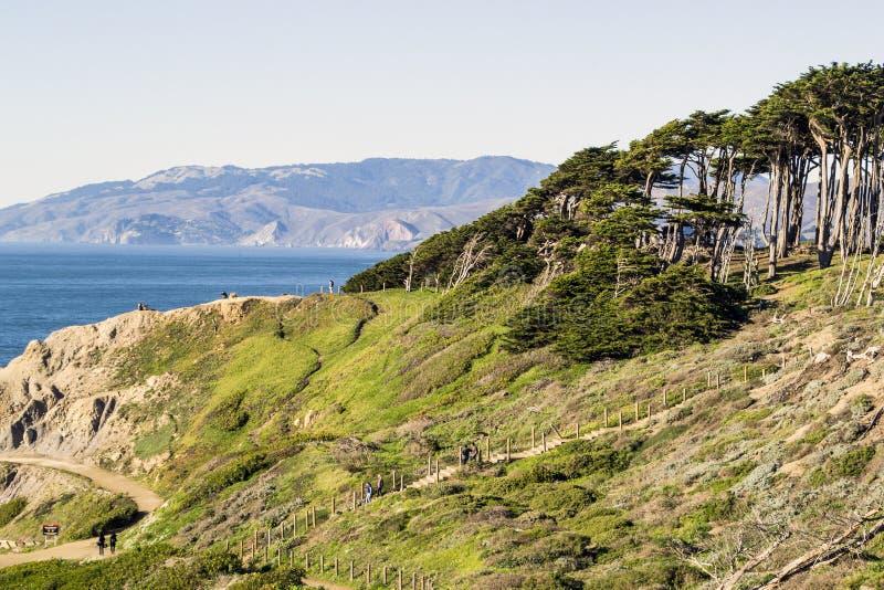 Nordliga Kalifornien kust royaltyfri fotografi