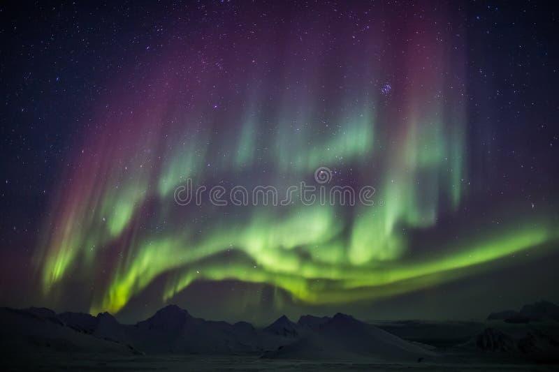 Nordliga ljus över de arktiska bergen och glaciärerna - Spitsbergen, Svalbard arkivfoto
