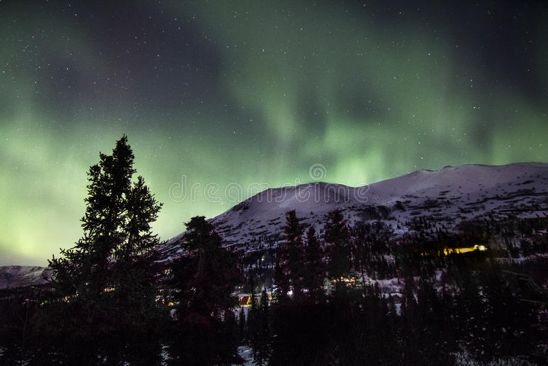 Nordliga ljus över det snöig alaskabo berget royaltyfri fotografi