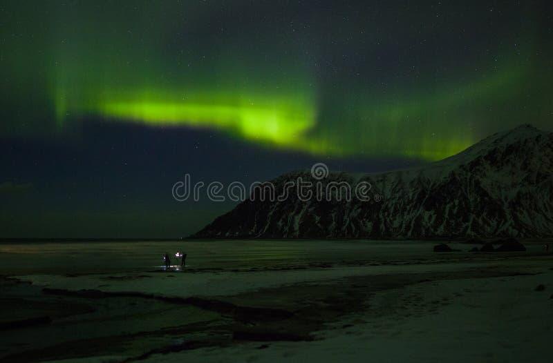 Nordliga ljus Aurora Borealis lofoten norway royaltyfri bild