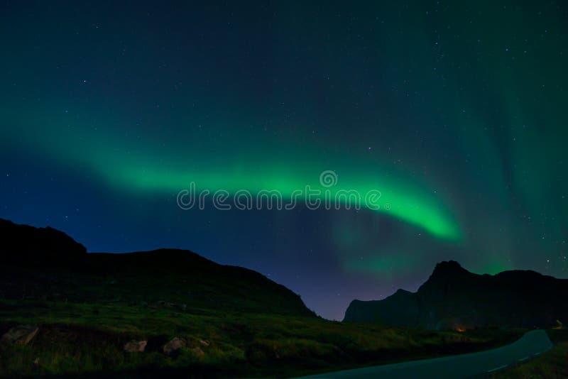 Nordliga ljus i Lofoten, Norge royaltyfri foto