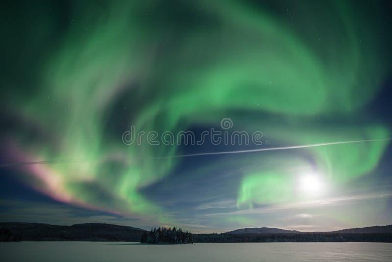 Nordliga ljus på Kola Peninsula Murmansk region, Ryssland royaltyfri foto
