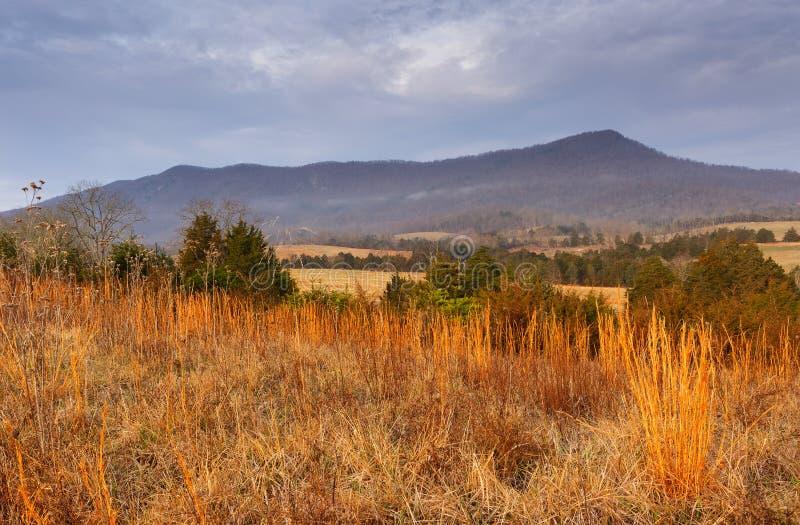 Nordligt amerikanskt landskap royaltyfria foton