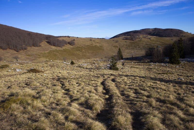 Nordligt Velebit landskap arkivbild