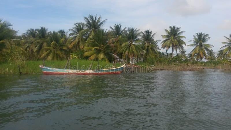Nordostlig são Francisco för brasilianSergipe Alagoas flod arkivfoto