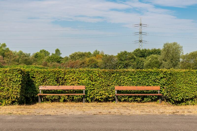 Nordsternpark, Gelsenkirchen, North Rhine-Westfalia, Germany. Two benches, sorrounded by a hedgerow, seen in the Nordsternpark, Gelsenkirchen, North Rhine royalty free stock photos