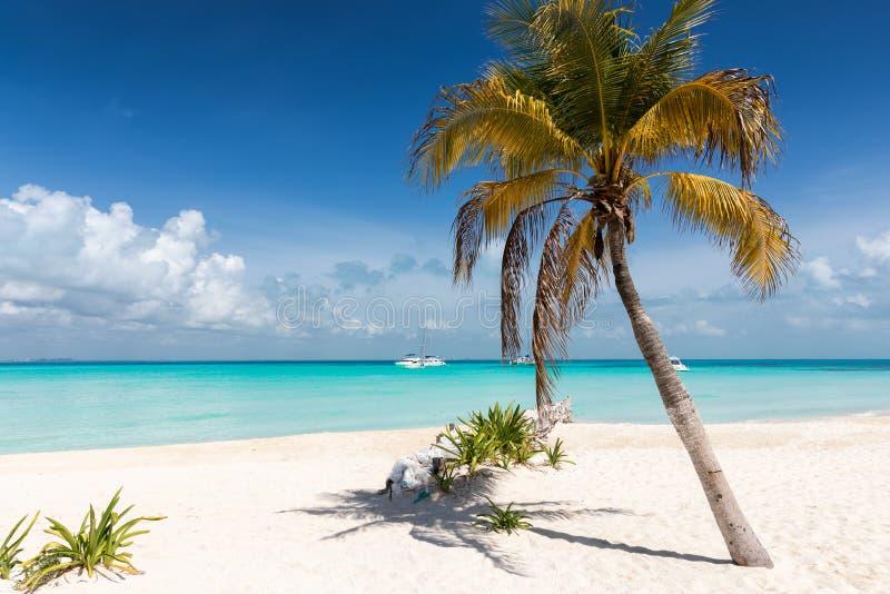 Nordstrand in Isla Mujeres, Yucatan, Mexiko lizenzfreies stockbild