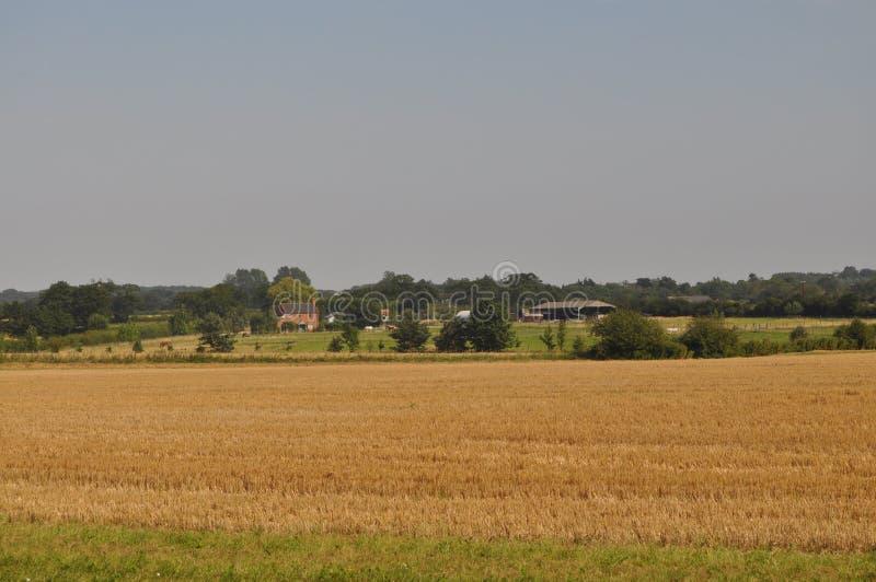 Norfolk στοκ εικόνα με δικαίωμα ελεύθερης χρήσης