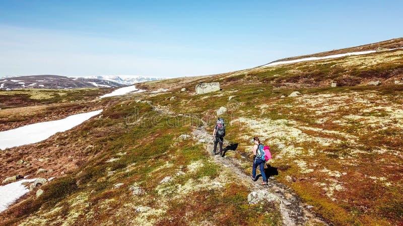 Norge - ett par som fotvandrar i den h?glands- plat?n royaltyfri foto