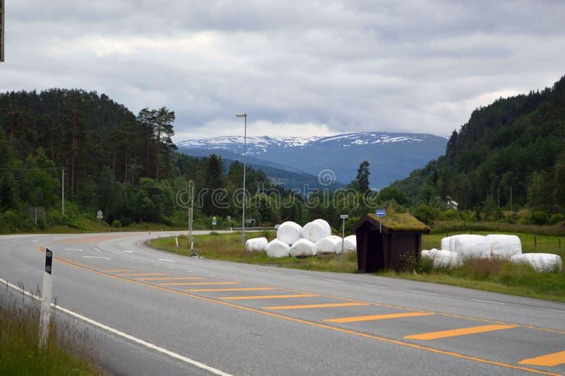Norge väg arkivbild