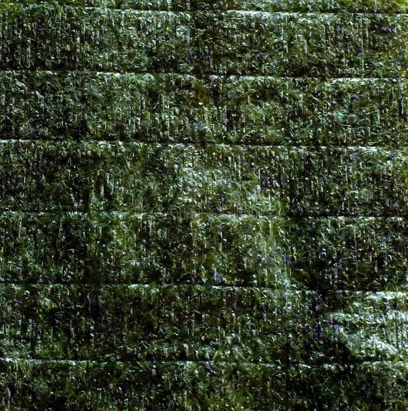 Nori. An image of green leaf of dried nori royalty free stock photo