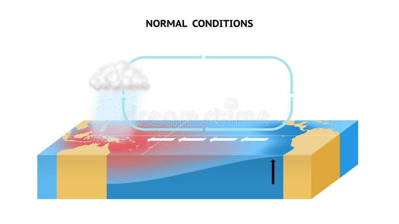 Normal Conditions In The Equatorial Pacific Ocean. Anomalous conditions in the equatorial Pacific Ocean royalty free illustration
