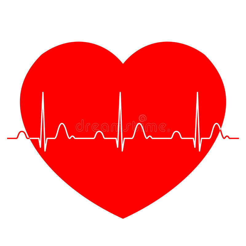 Normal ECG Electrocardiogram with red heart vector illustration
