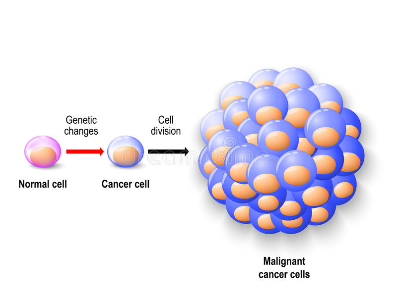 Normale menselijke cel, kankercel en kwaadaardige kanker stock illustratie