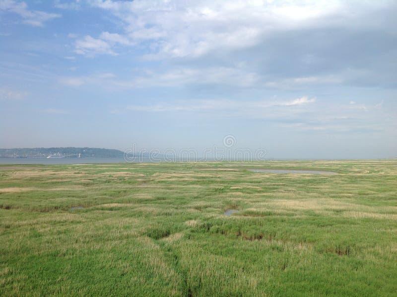 Normandie - strand för dag D royaltyfria foton
