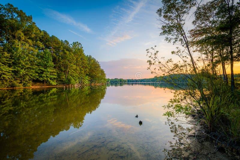 Normando do lago no por do sol, no parque de Parham em Davidson, Carolin norte foto de stock royalty free