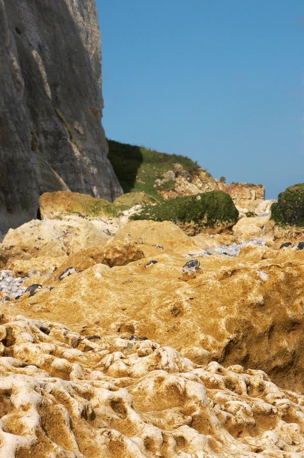 Download Normandy cliff stock image. Image of horizon, chalk, bretagne - 12995261