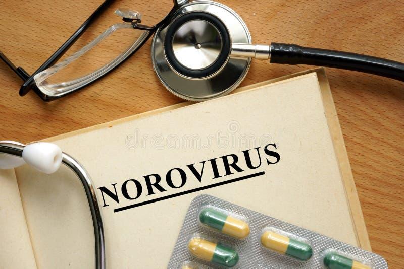 Norovirus стоковая фотография rf